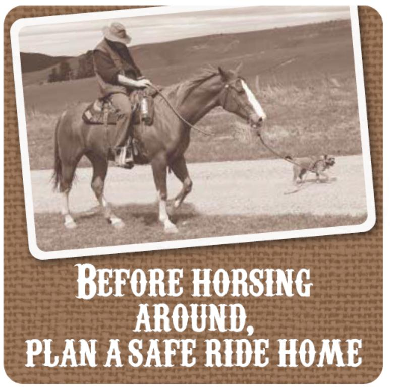 Before horsing around, plan a safe ride home