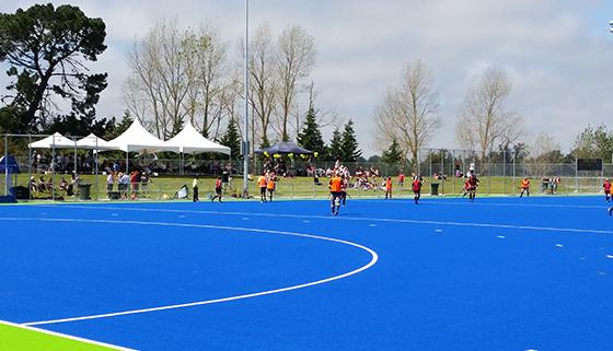 Blue water based hockey turf