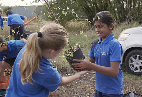 Students With A Native Seedling