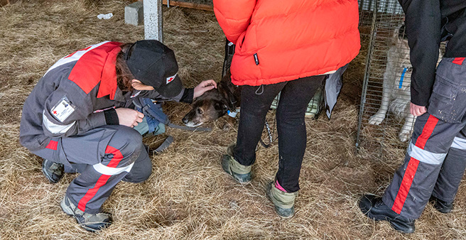 Animal welfare was a big part of the exercise.