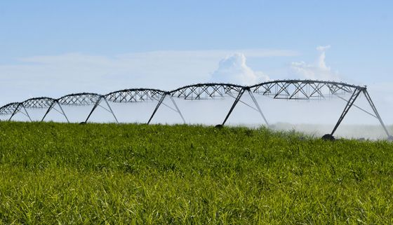 20200515 - Irrigation