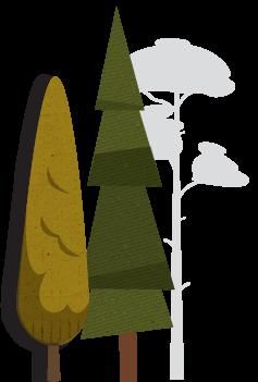LetsTalkRubbish_Trees