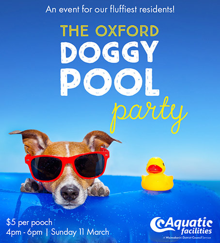 Doggy Pool Party Poster