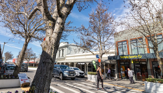 Town Centre Trees to Remain thumbnail image.
