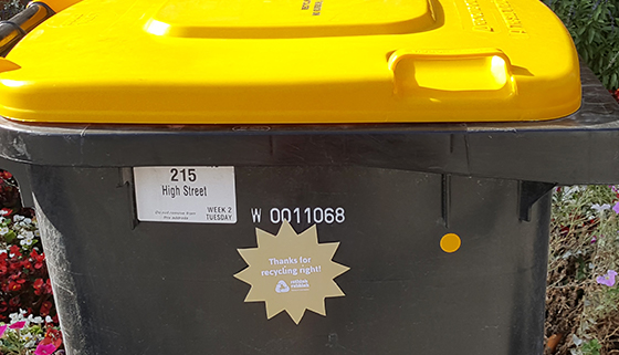 Gold star on bin for recycling right