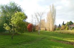 Rickton-Place-Drainage-Reserve
