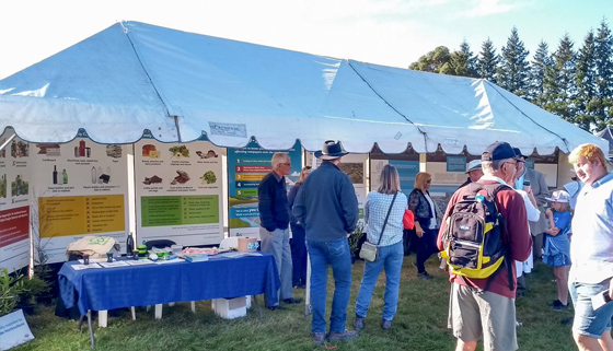 Photo of Council marquee set up and people talking at the Oxford Show