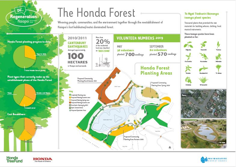 The Honda Forest Infographic