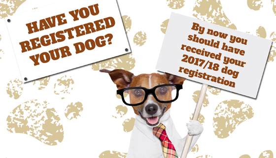 Have You Registered Your Dog Yet? thumbnail image.