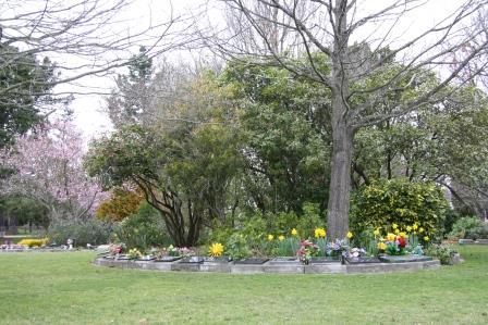 Rangiora Lawn Cemetery