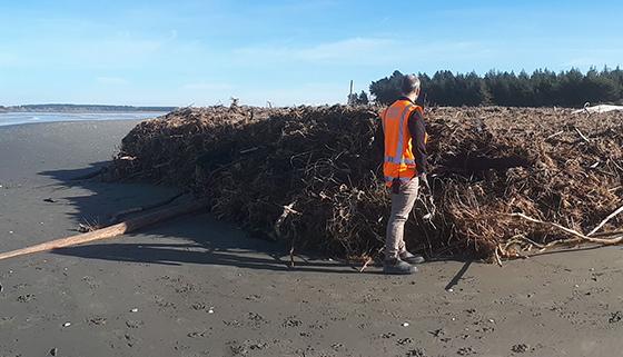 Piles of debris washed up at Kairaki Beach at the rivermouth