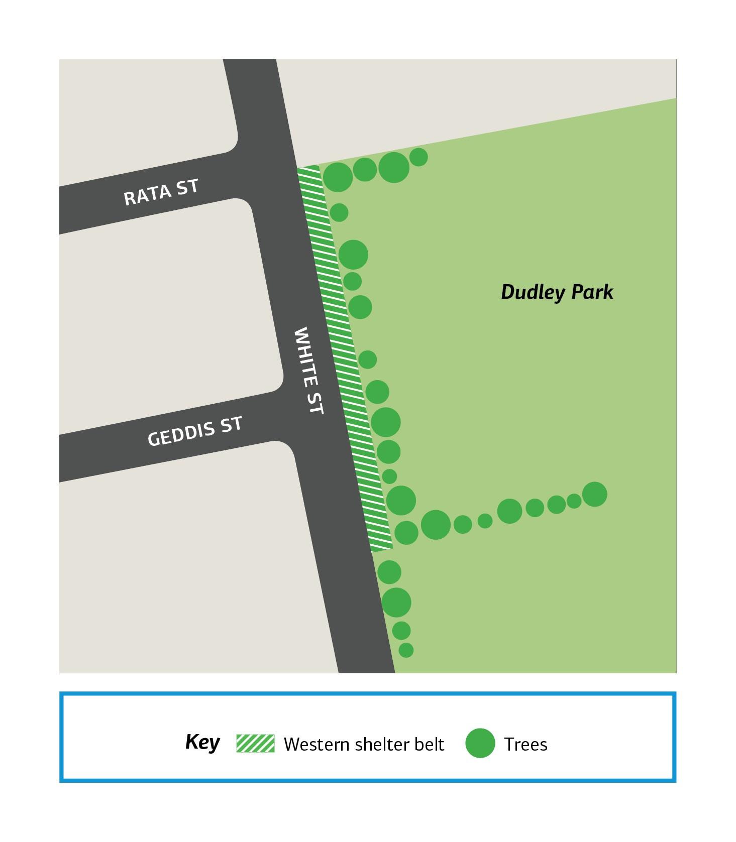 Stylised map showing location of shelter belt on White Street