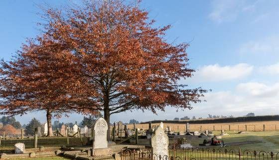 07082020 - Cust Cemetery