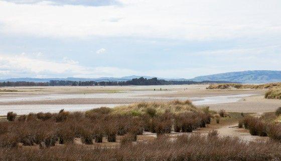 20201007 - Ashley Rakahuri Estuary