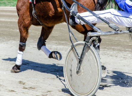 Rangiora Racecourse Hearing to Continue with Two Commissioners thumbnail image.