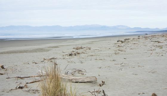 Scenic photo of pegasus bay beaches